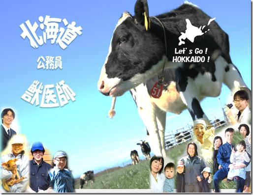 北海道獣医師募集