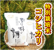 株式会社ファーム木精(こだま)