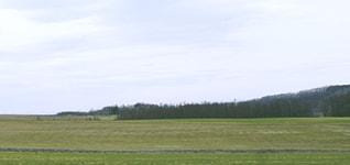 株式会社花畑牧場