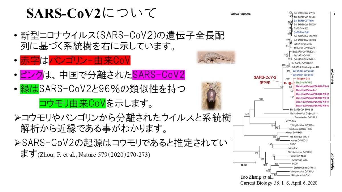 「新型コロナウイルス感染症に関する新しい啓発動画・資料について」のお知らせ(2)